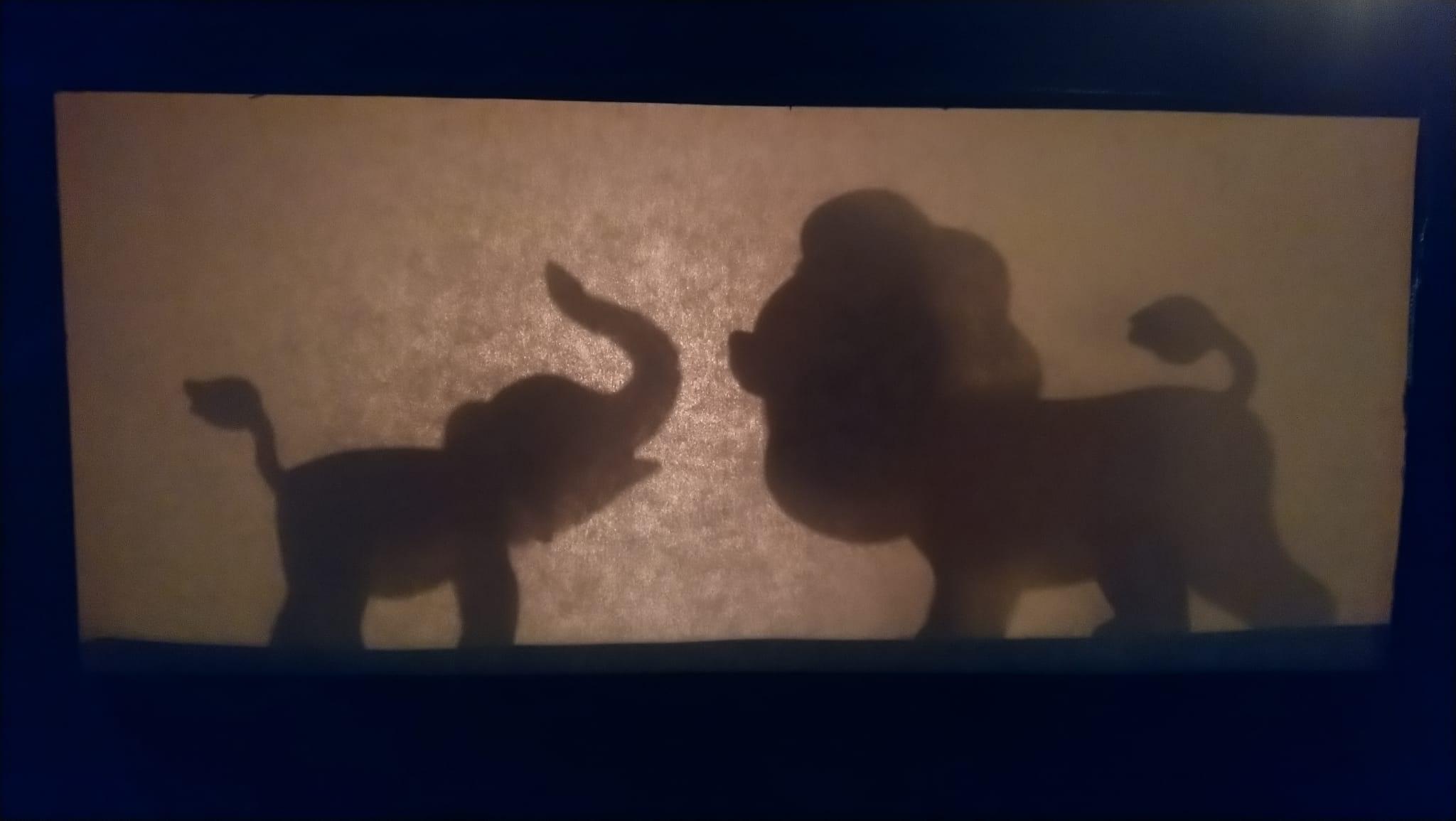 scatola ombre cinesi